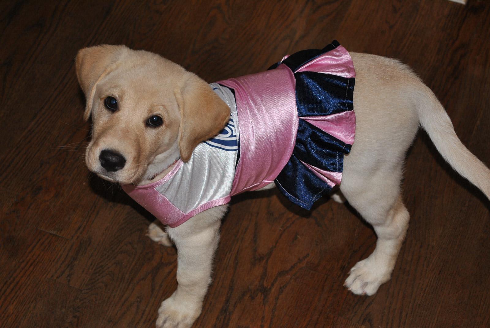 zoe cheerleader costume