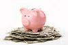 piggy bank money